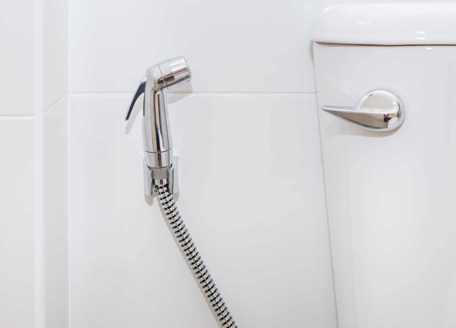Stainless steel handheld bidet sprayer in toilet bathroom