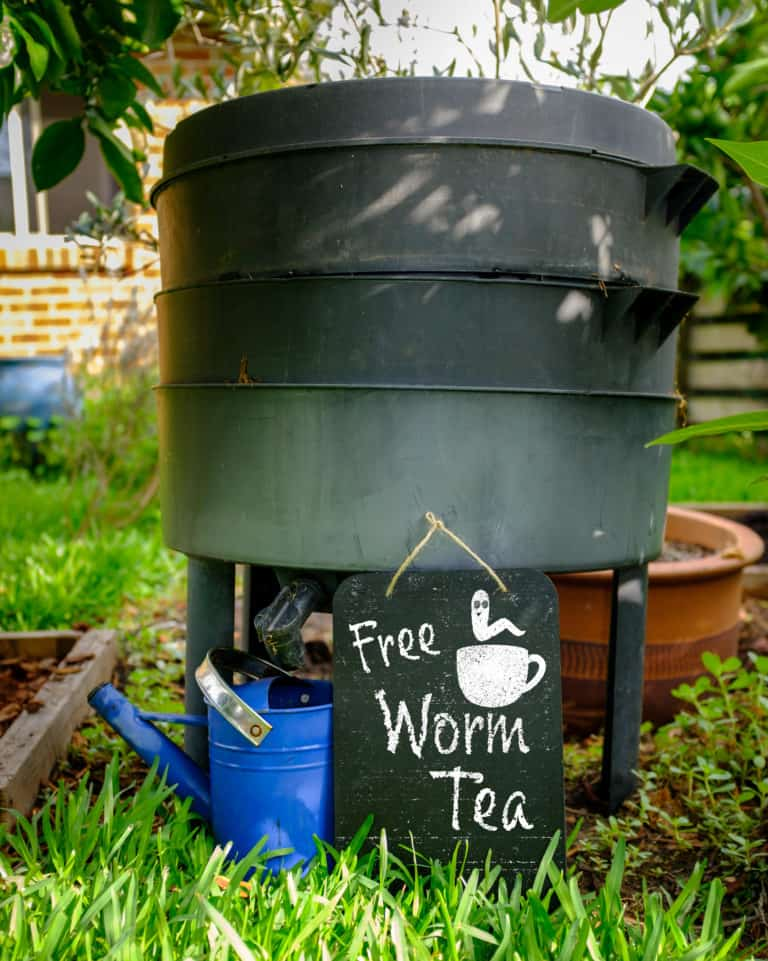 worm compost leachate being advertised as worm tea