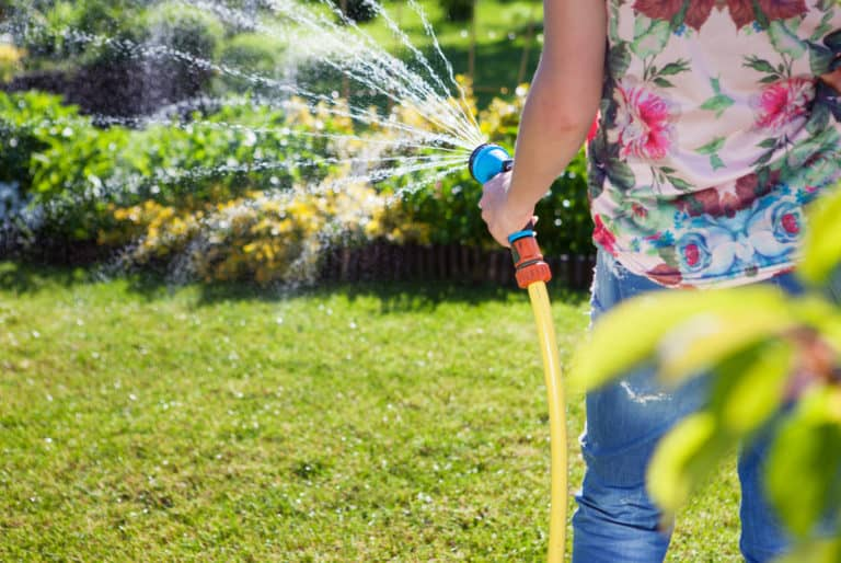 Woman watering the lawn with a hose
