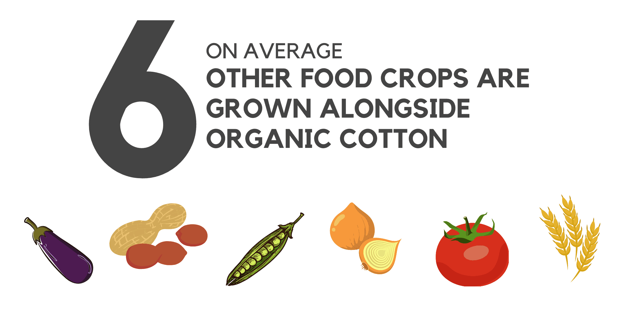 cotton farmers grow an average of 6 other food crops alongside the cotton