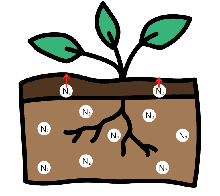 Nitrogen in soil, with the top layer highlighted arrows showing that only the nitrogen from the top layer is affected