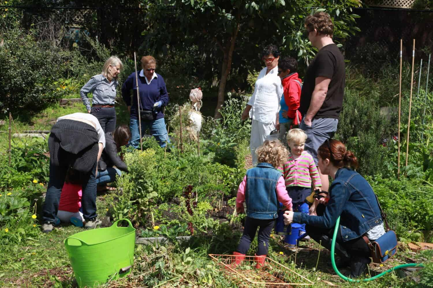 kids and adults working in a garden