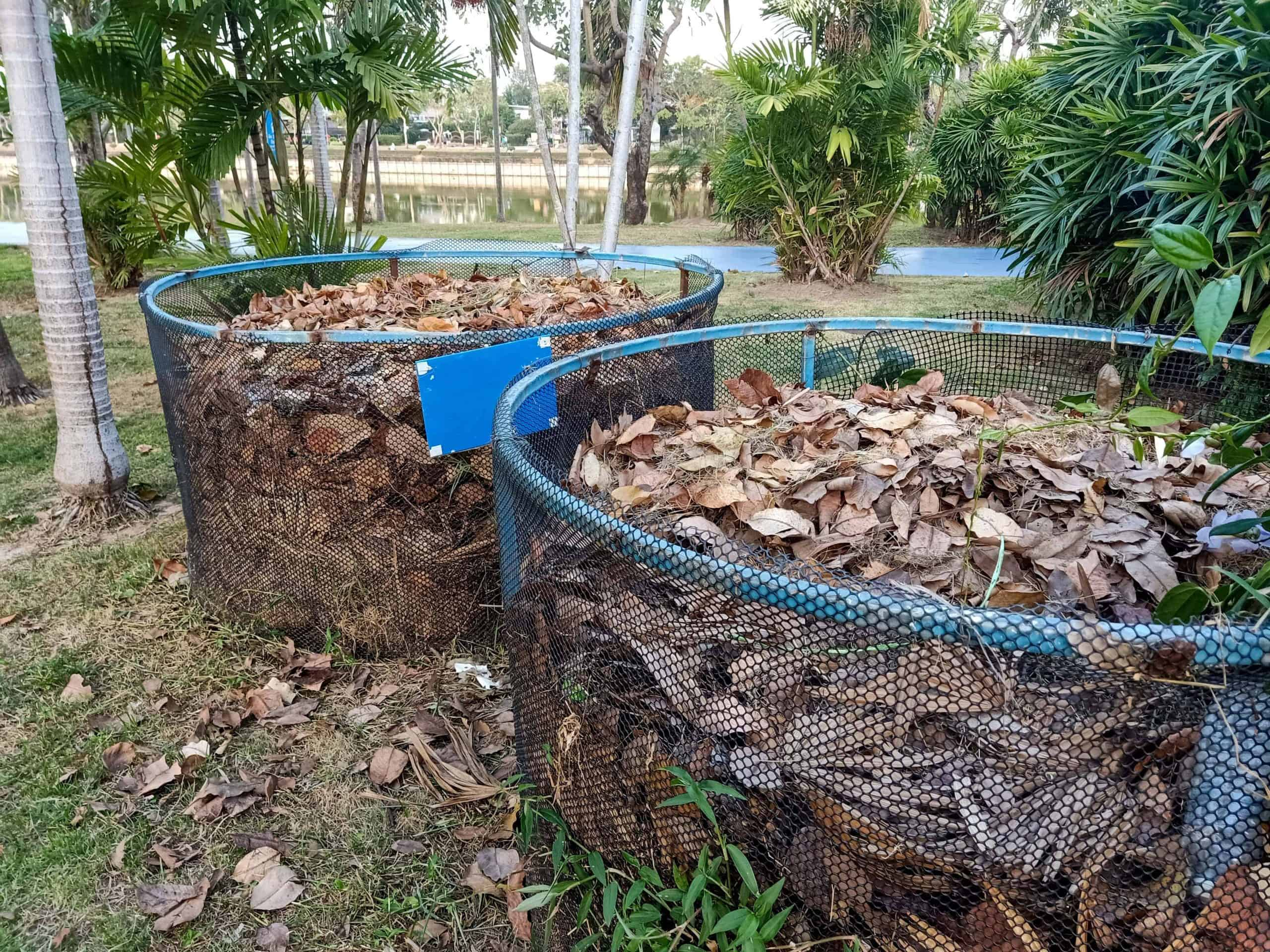 leaf mold being made in wire mesh bins