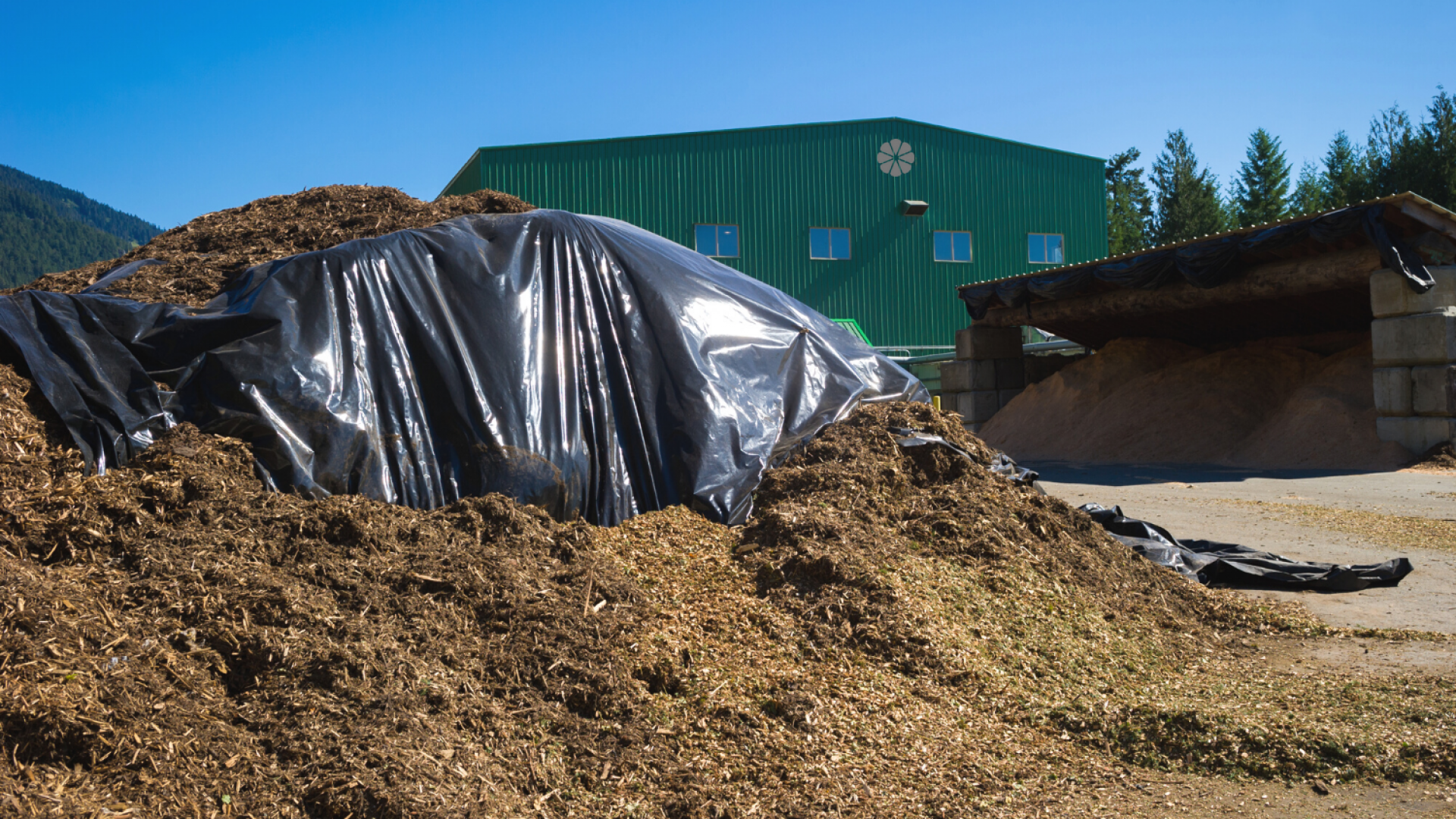 Can Compost Get Too Hot? Exactly How & Why Compost Overheats