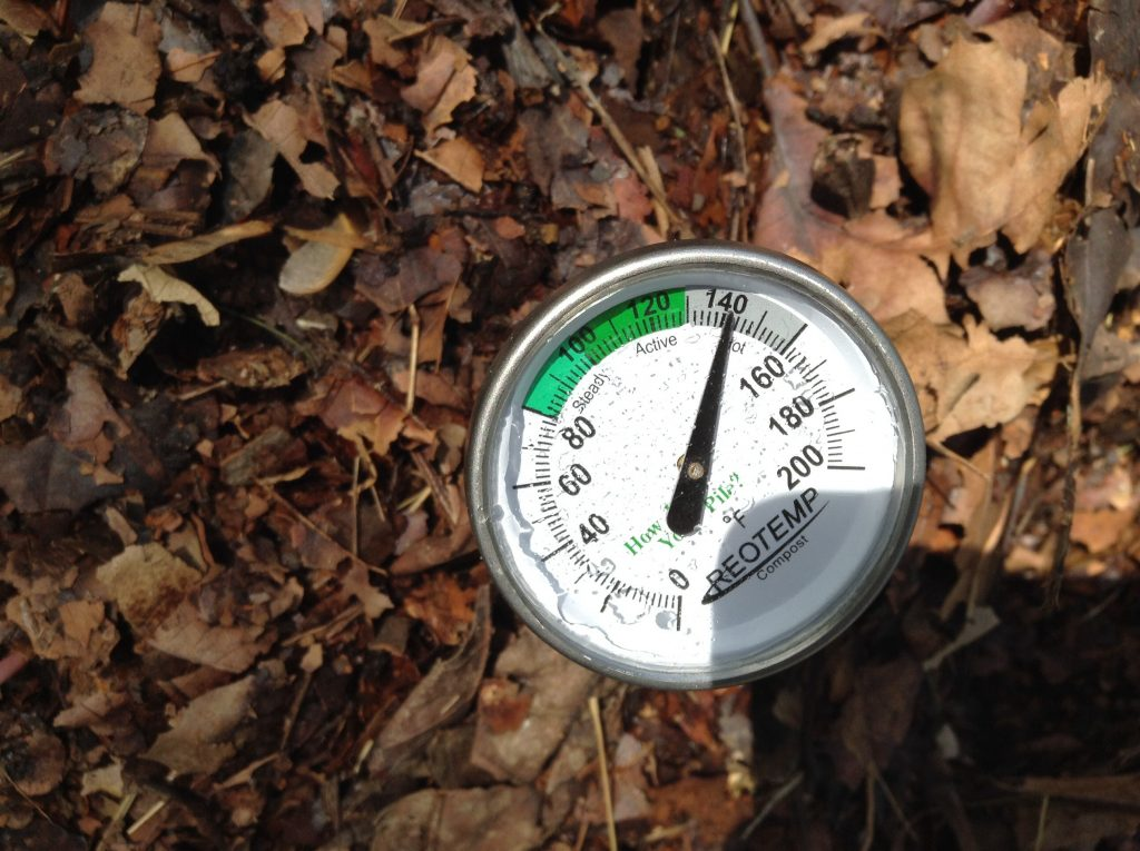 Compost thermometer reading 141 degrees Fahrenheit stuck into a compost pile covered with dry leaves