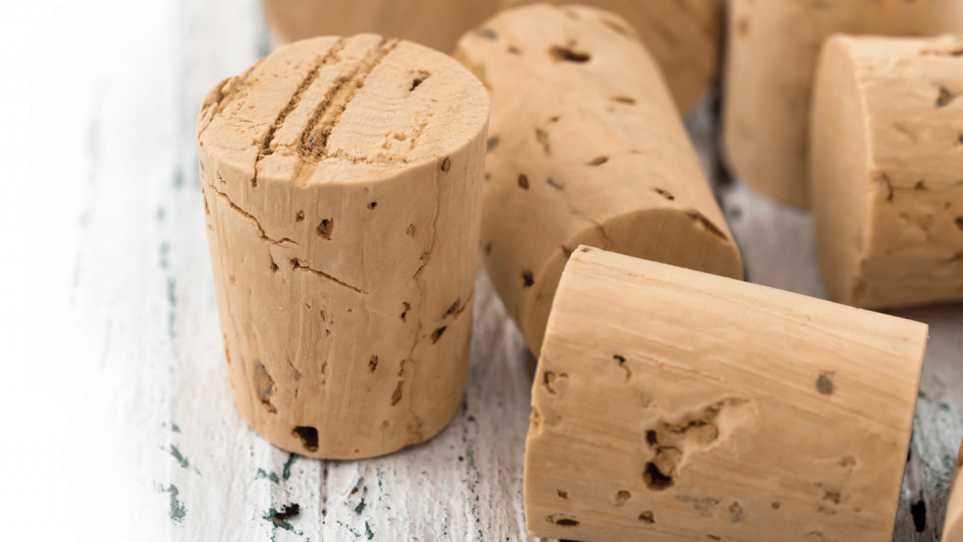 Is Cork Eco Friendly? A detailed look into 'nature's most sustainable material'