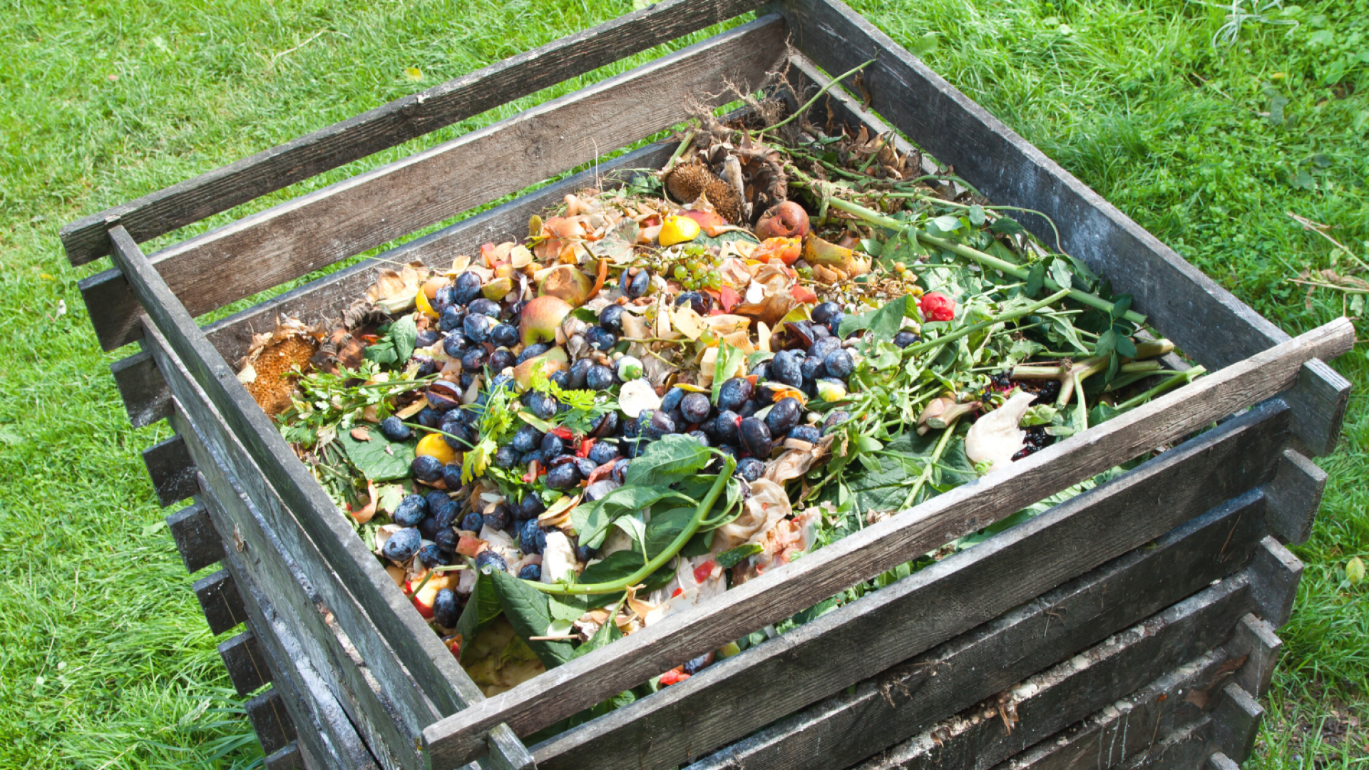 How To Move A Compost Bin: All Of Your Questions Answered